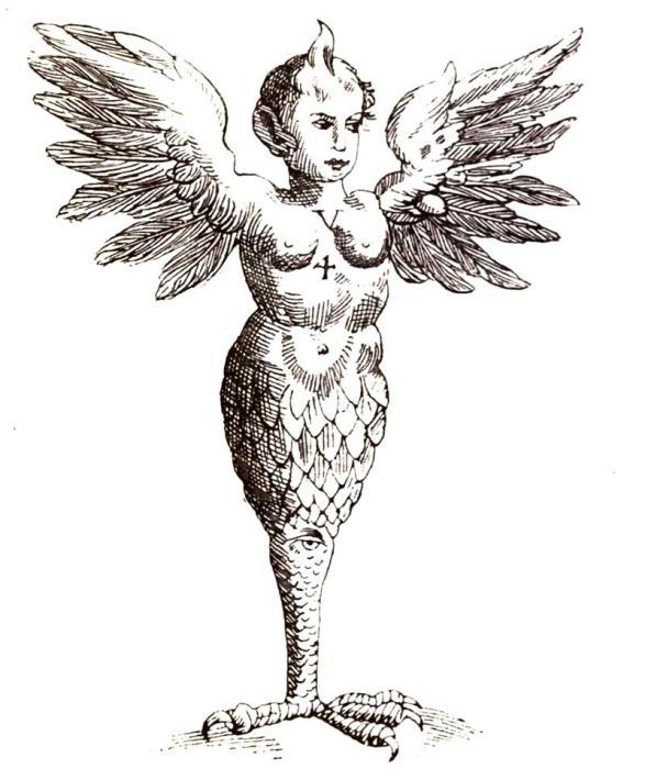 Монстр из Равенны, как его представил средневековый гравер. Гравюра XVII века. | Фото: biodiversitylibrary.org.