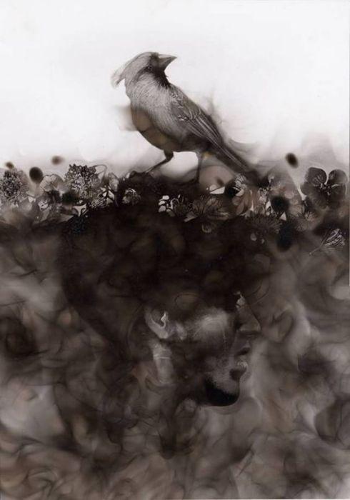 Птица. Стивен Спазук. | Фото: inagblog.com.