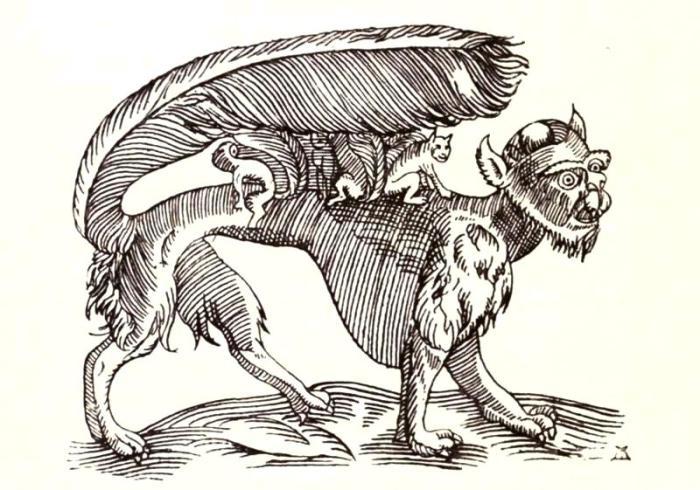 Су - чрезмерно заботливая монстр-мать. Гравюра XVII века. | Фото: biodiversitylibrary.org.