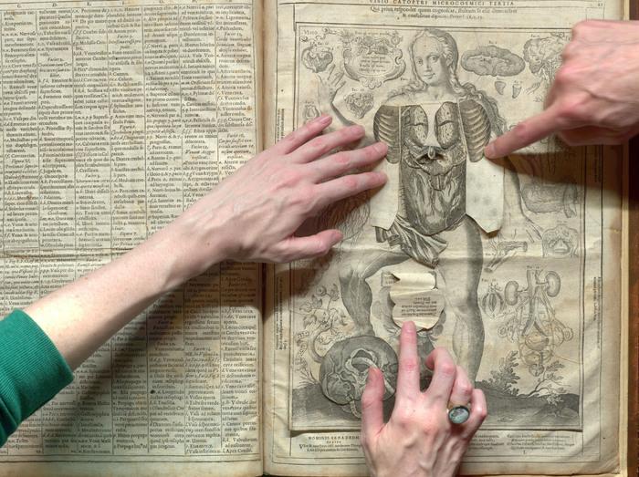 Анатомическая книга-раскладушка XVI века. | Фото: drc.usask.ca.