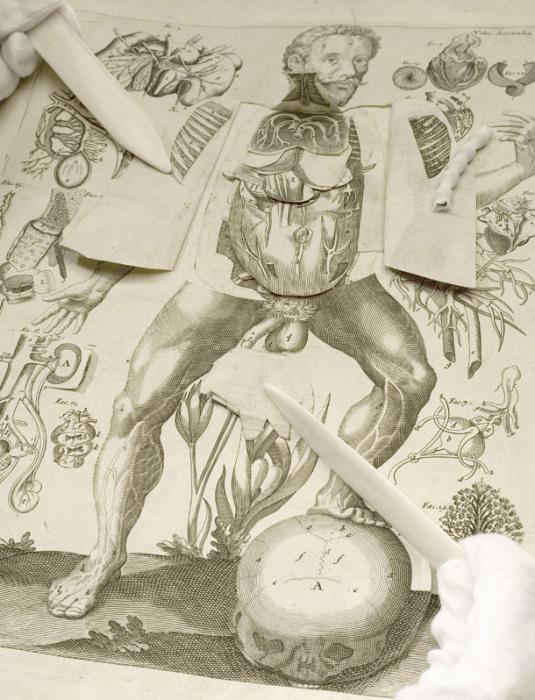 Книга-панорама для изучения анатомии. Германия, XVI век. | Фото: rubyjaz.blogspot.com.