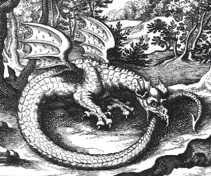 Василиск на средневековой гравюре XVII века. | Фото: galkovsky.livejournal.com.