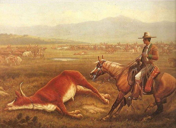 Всадник вакеро заарканил быка. 1830-е годы. | Фото: commons.wikimedia.org.