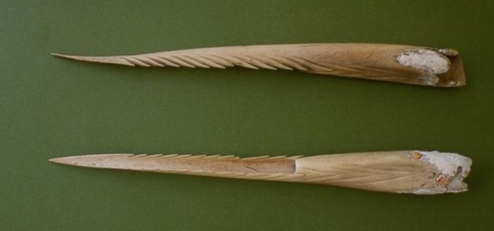 Костяные наконечники копий из костей человека, остров Сайпан. | Фото: guampedia.com.