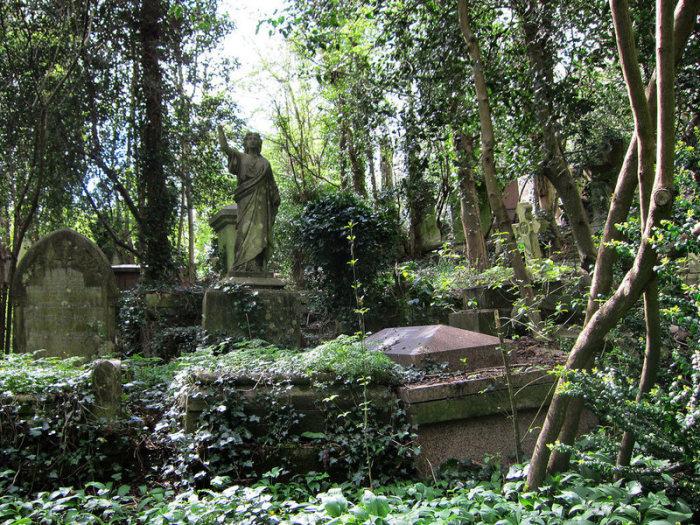 Увитые плющом могилы лондонского кладбища Хайгейт. Фото: atlasobscura.com.