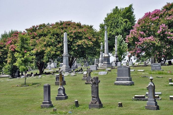 Панорама кладбища Элмвуд. | Фото: en.wikipedia.org.