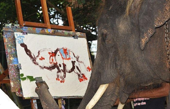 Слон-художник Нопаккао из Таиланда. | Фото: vmir.su.