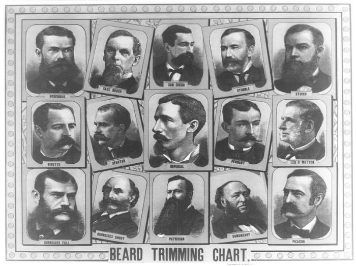 Плакат 1884 года с основными формами бороды. | Фото: atlasobscura.com.