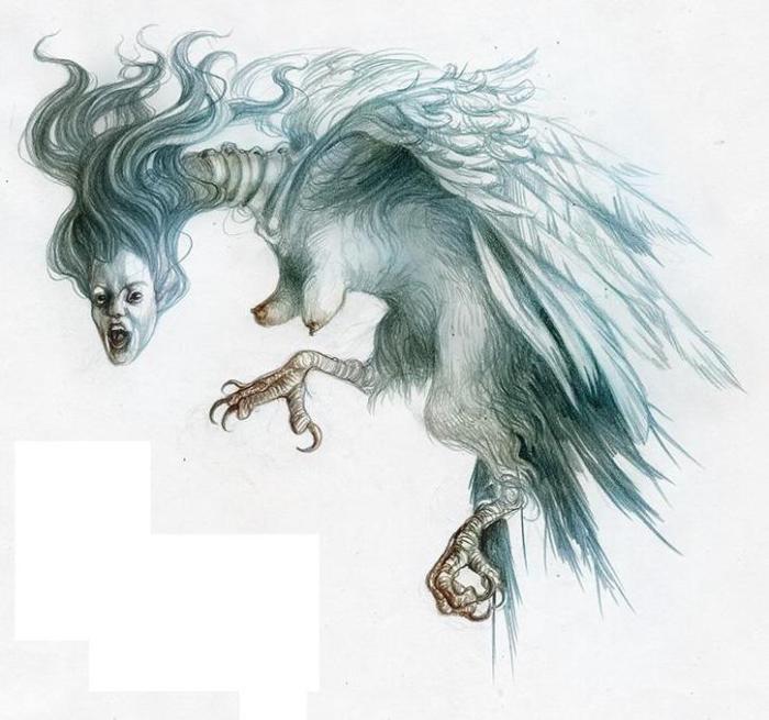 Гарпия. Рисунок Яны Хейдерсдорф. | Фото: bestiary.us.