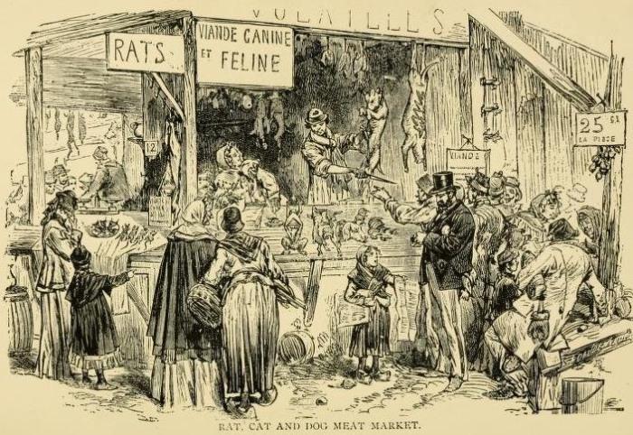 Парижский киоск, где продавали крыс, кошек и собак. | Фото: archive.org.