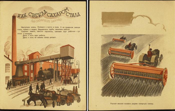 Иллюстрации из книги «Как свекла сахаром стала». | Фото: atlasobscura.com.