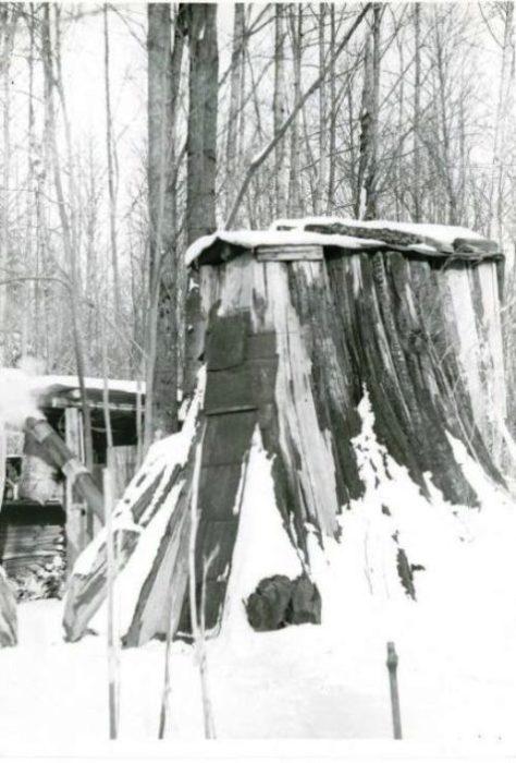 В таком доме вполне можно пережить суровую зиму.   Фото: historylink.org.