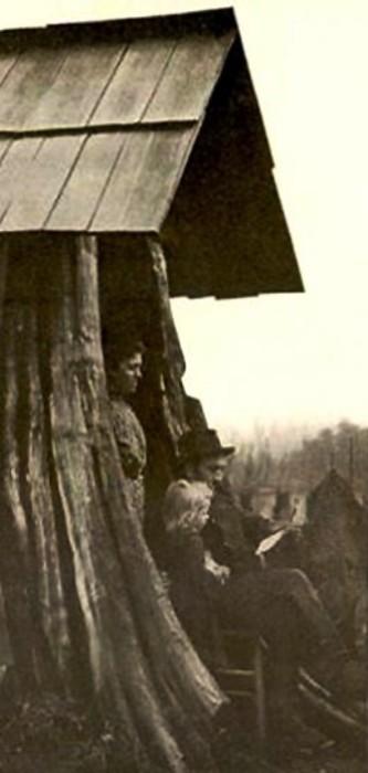 Семья Леннстром, живущая в пне. Эджком (Edgecomb), штат Вашингтон, 1901 год.   Фото: historylink.org.