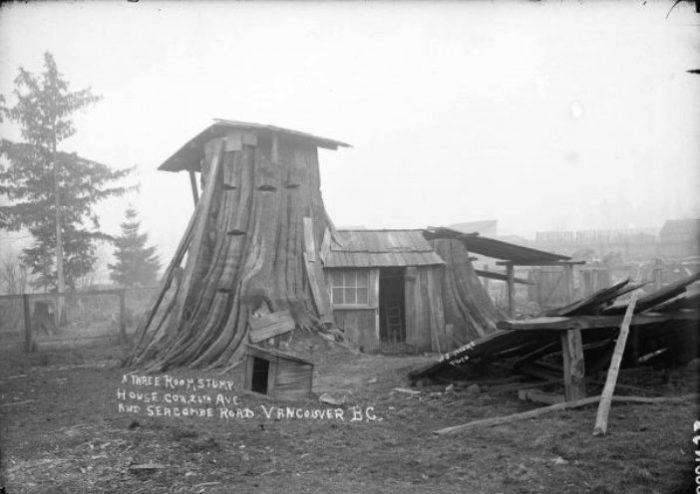 Трехкомнатный дом, сделанный из пенька. Маунт Плезант (Mount Pleasant), Британская Колумбия, Канада.   Фото: boingboing.net.