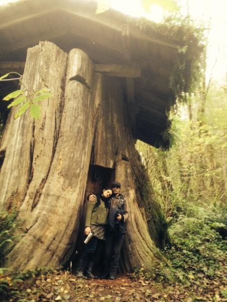 Дом в пне. Округ Пасифик, штат Вашингтон. | Фото: gatheringthestories.org.
