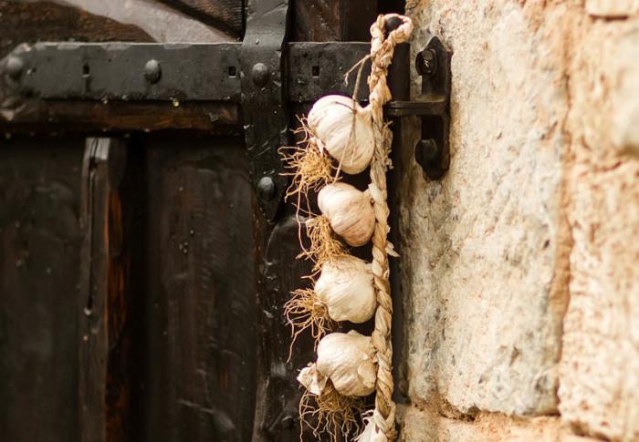 Чеснок на подоконниках и дверных рамах спасает от вампиров. | Фото: atlasobscura.com.