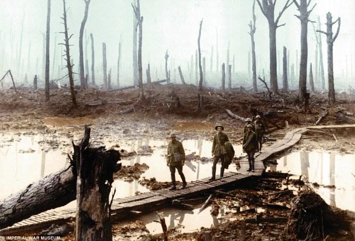 Британские солдаты передвигаются по помосту через лес вблизи бельгийского города Ипр. | Фото: dailymail.co.uk.