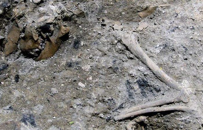 Итальянский археологический сюрприз: окаменевшее пожарище.