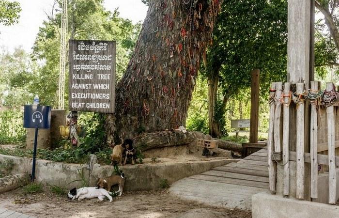 Вход в музей геноцида «Тоул Сленг»./ Фото: tripadvisor.in
