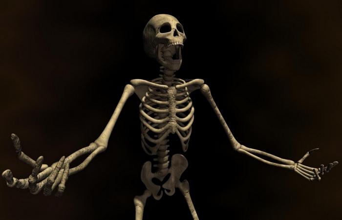 Торговля  человеческими скелетами: работа на дому.