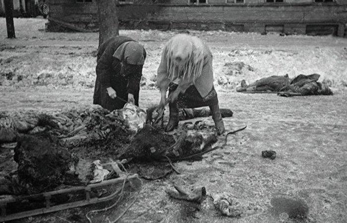 Убитая осколком лошадь - пища добытая после артобстрела./ Фото: rambler.ru