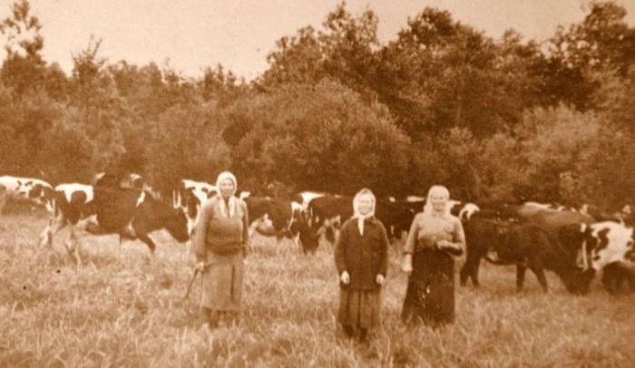 В деревне остались одни женщины. / Фото: www.чудноеподворье.рф
