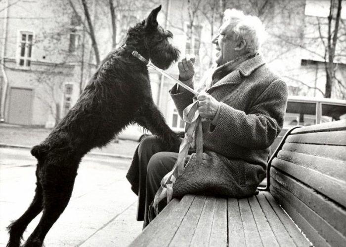 Юрий Никулин с ризеншнауцером Ютой. / Фото: www.1001.ru