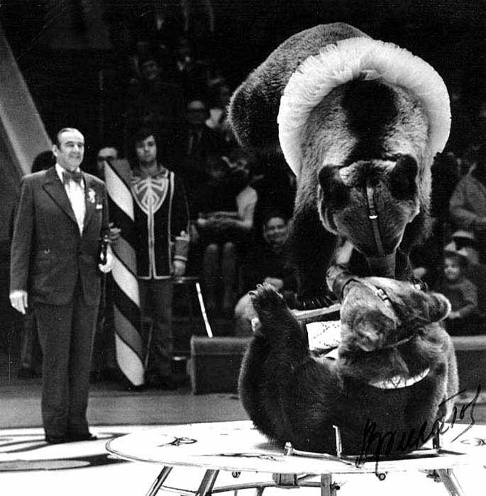 Валентин Филатов с медведями. / Фото: www.366days.ru