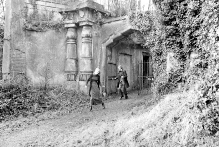 Участники охоты на вампиров на кладбище Хайгейт. / Фото: www.freaked.com