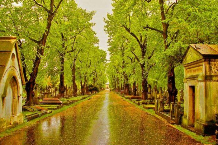 Бромптонское кладбище. / Фото: www.properdecision.uk