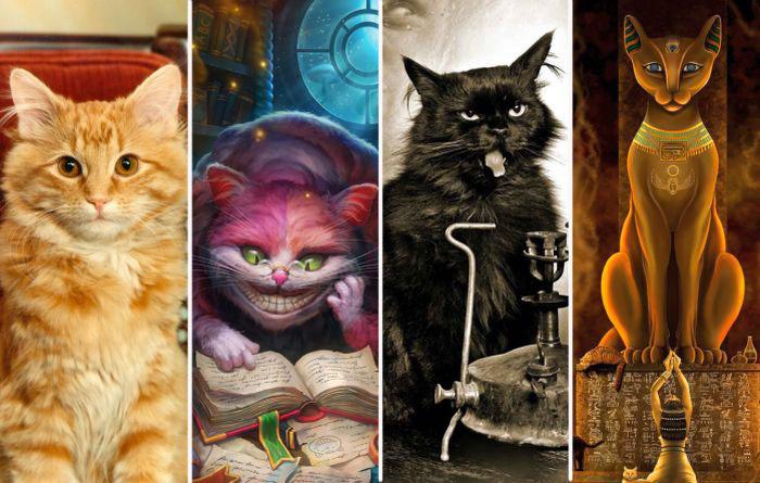 Литературные коты