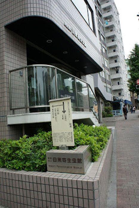 Музей паразитологии в Токио. / Фото: www.googleusercontent.com