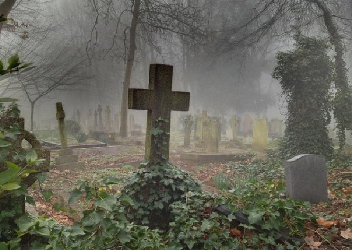 Лондонское кладбище викторианской эпохи, расположенное в лесу.