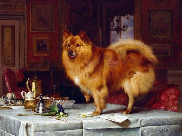 «Марко на накрытом для завтрака столе королевы». (1893 г.) Автор: Чарльз Бартон Барбер.