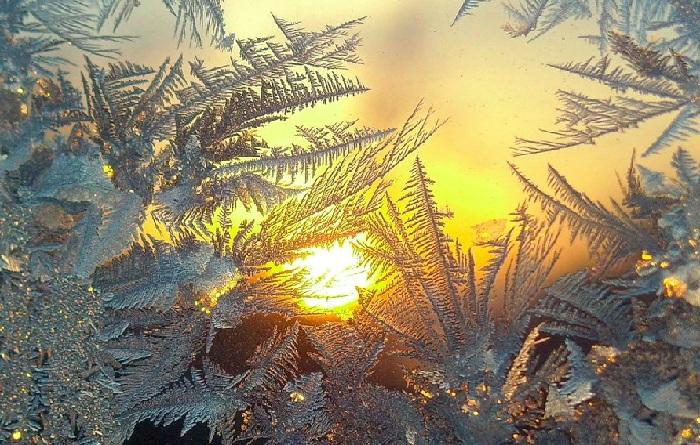 Мороз - гениальный художник природы, без рук творящий невероятные шедевры.