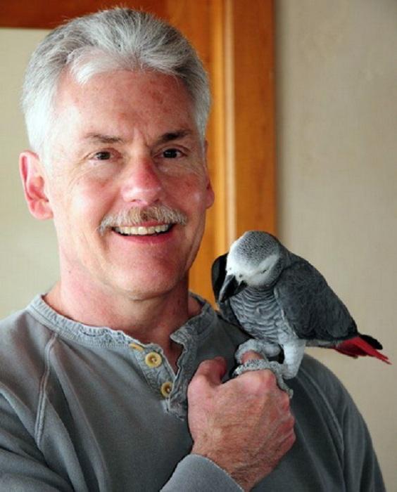 Дэниел Смит, художник изображающий мир дикой природы.