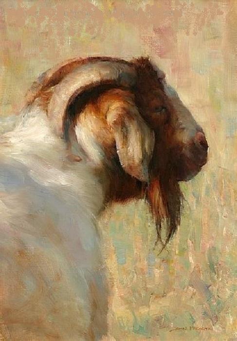 Картины Джона Маккартина.