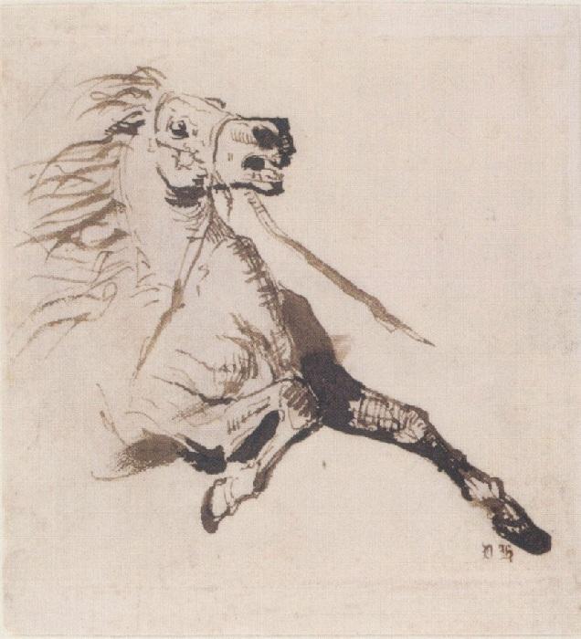 Графика Виктора Гюго.