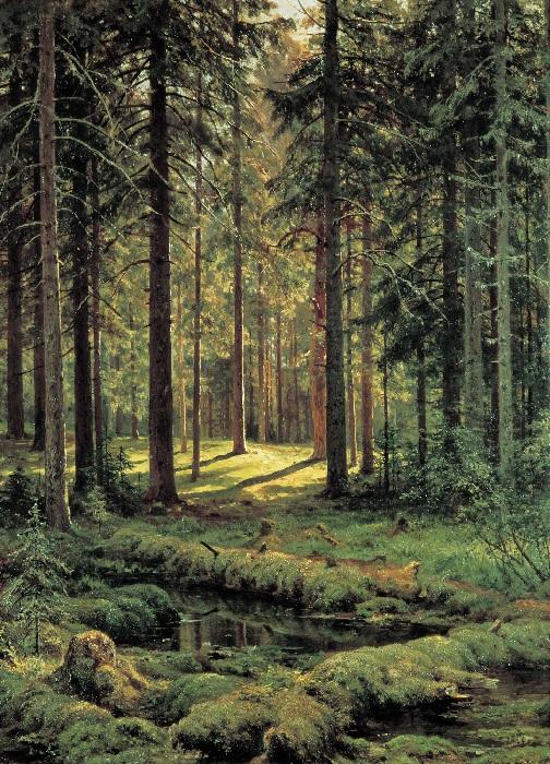 «Солнечный день». (1895 год). Автор: Иван Шишкин.