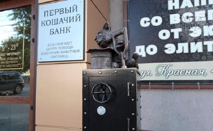 «Первый кошачий банк». Автор композиции: Герман Феоктистов.