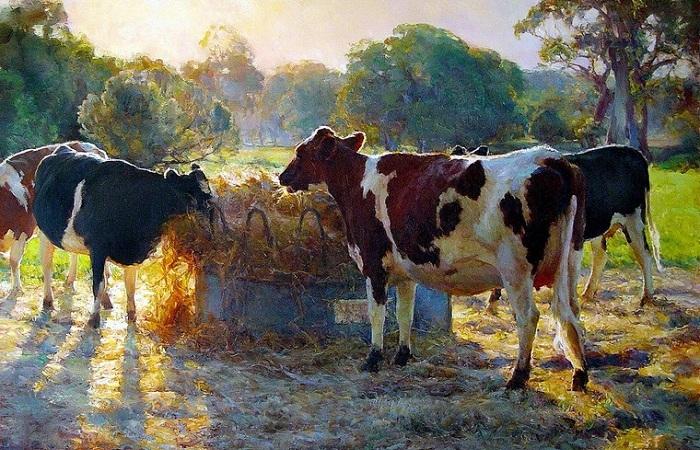 Солнечная живопись Джона Маккартина.