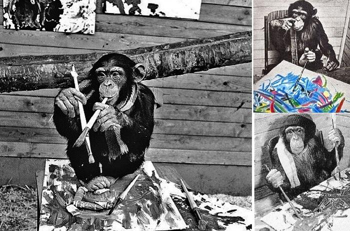 Пьер Брассо - художник-авангардист, он же шимпанзе Питер.