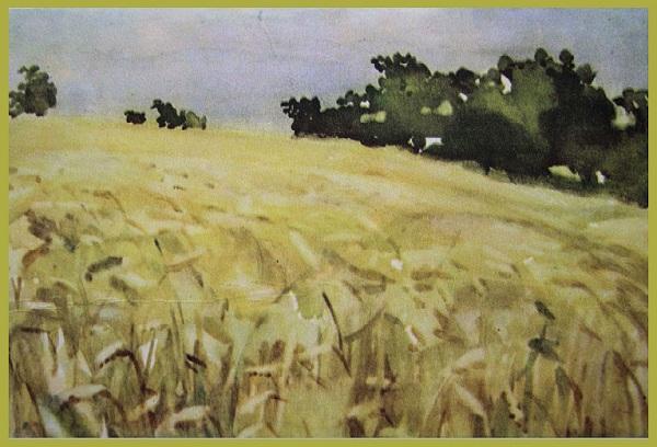 Акварельный пейзаж. Рожь. Автор: Коля Дмитриев.
