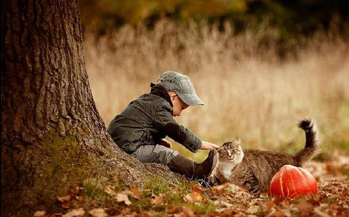 Осень.  Фотограф: Елена Карнеева. | Фото: karneeva.ru.