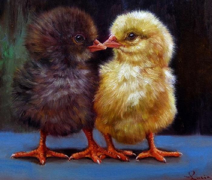 Цыплята. Автор: Lucia Heffernan.