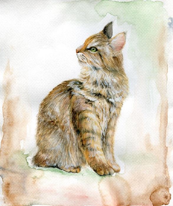 Кот в стиле реализма.