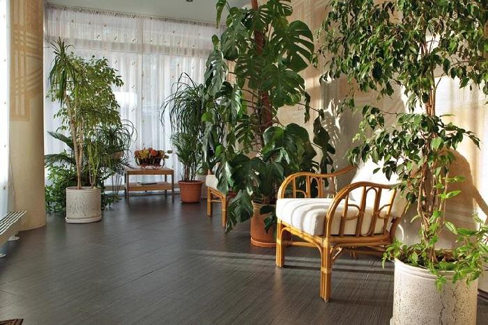 Зимний сад в особняке Алексея Глызина.