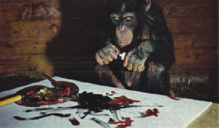 Шимпанзе Питер в творческом поиске. | Фото: livejournal.com.