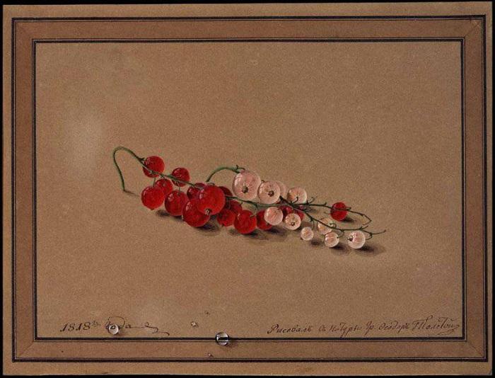Ягоды красной и белой смородины. (1818). Автор: Федор Толстой.