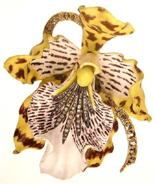 Брошь «Орхидея» Odontoglossum Wyattianum. Розовая, жёлтая, коричневая эмаль. П. Фарнхэм. 1889  год.